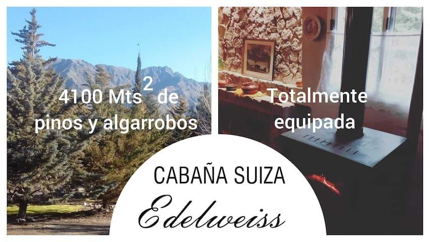 CABAÑA SUIZA EDELWEISS 4.000 metros cuadrados