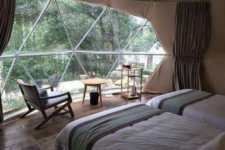 罗浮山星空帐篷双床民宿,最值得体验的特色新民宿。吸氧好去处!
