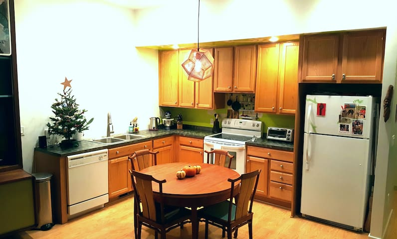 Modern One Bedroom in Heart of Carbondale