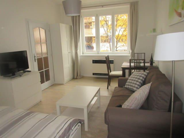 Cozy apartment close to centre