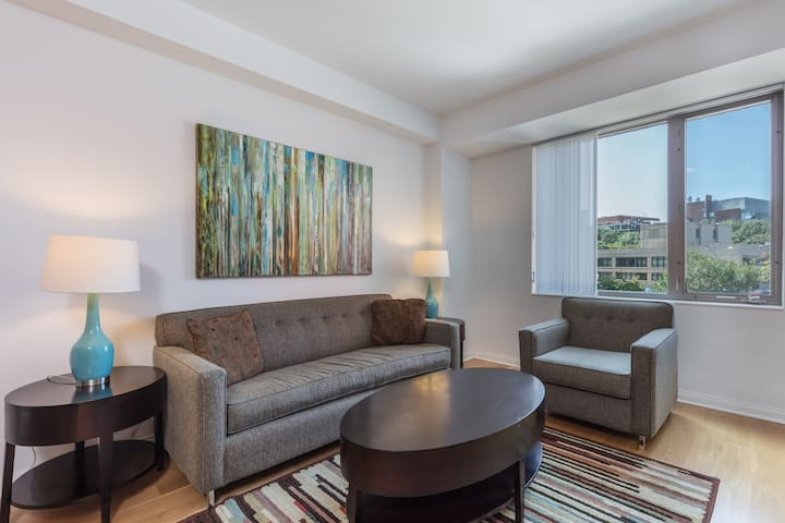 Lux Furnished Cambridge 1-BR Apartment