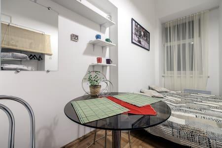 1 room nice apt in Lviv! - L'viv - Leilighet