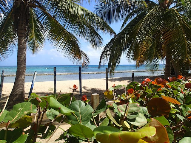 Sun Bay at Ababor Suites, Bastimento Beach - Vieques - Huoneisto