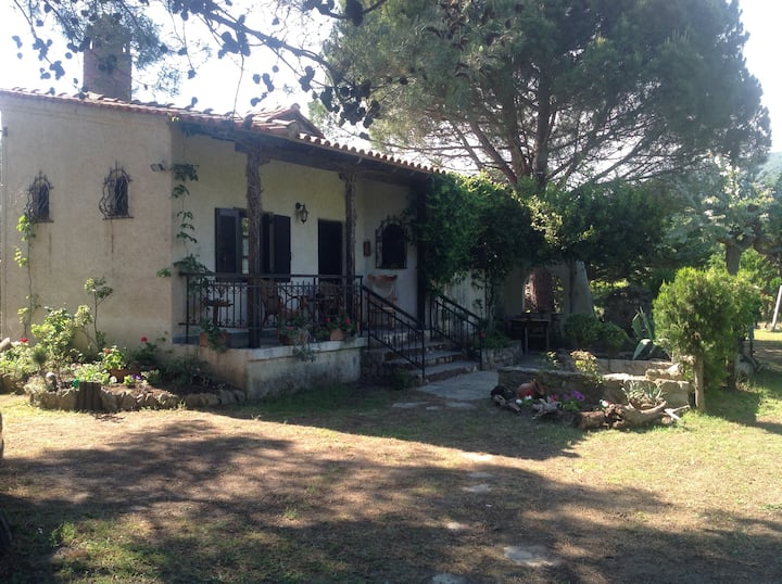Cottage in Sykia beach, Halkidiki