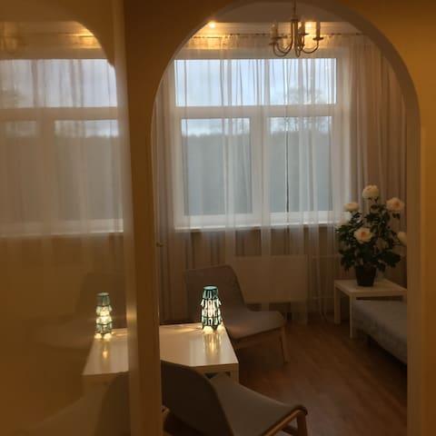Впечатления и комфорт - Krasnoye Selo - Apartamento