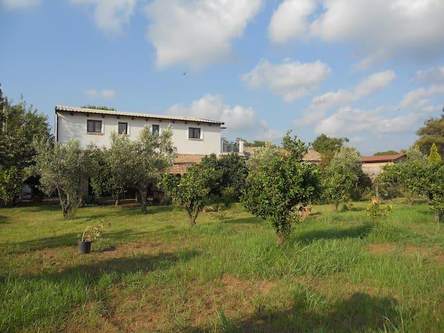 Antico casale - Lamezia Terme - Apartemen
