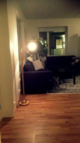 Cozy new apartment/ trendy central part of Oslo - Oslo - Apartament