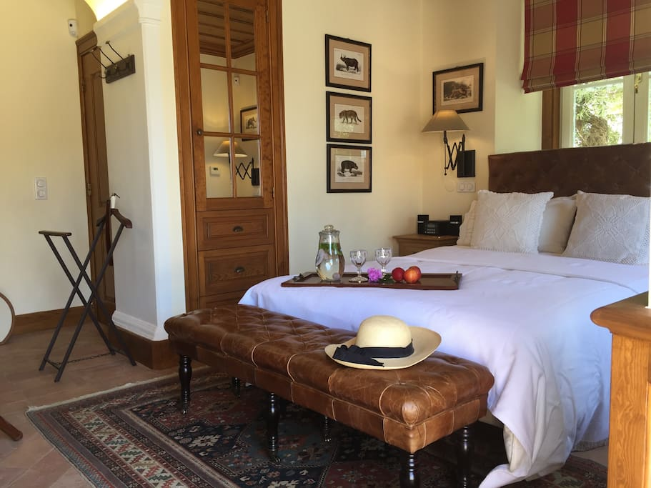 African inspired SAFARI SUITE with en-suite bathroom and kitchenette