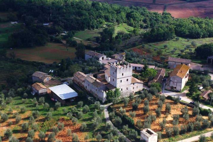 Il Camino del Castello della Villa - La Villa - Apartamento