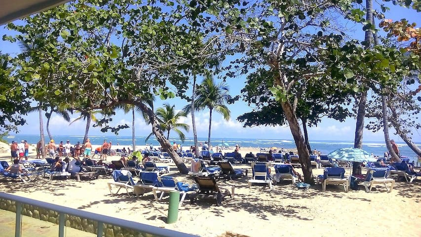 Beach Front Apartment Puerto Plata - Puerto Plata - Appartement