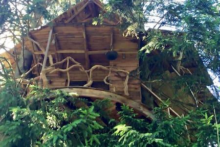 Cabane perchée - Kabin