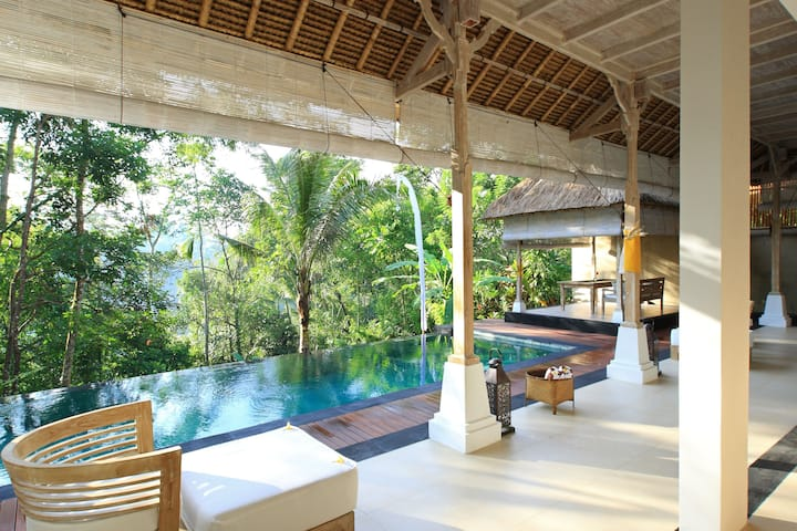 Jungle view villa with magical infinity pool