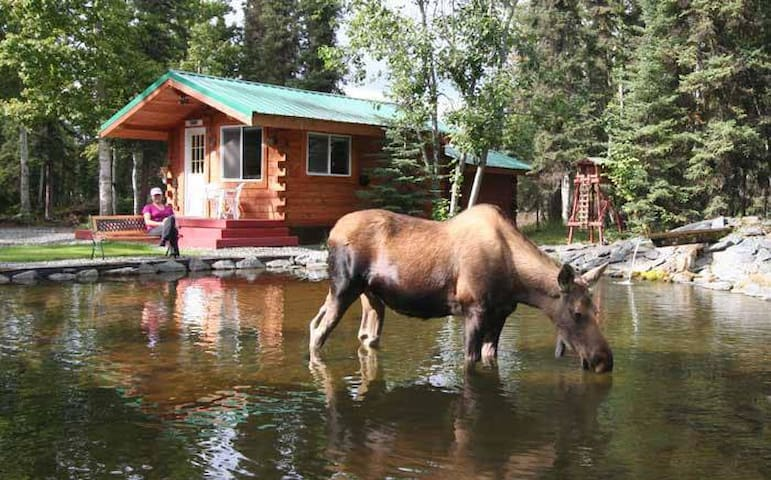 Wilderness cabins by the world-famous Kenai River!