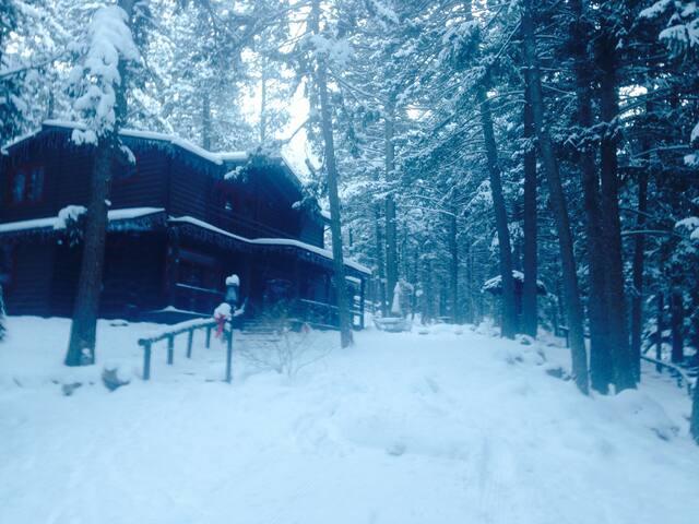 Private, Cozy 2-bedroom renovated 1910 Log Cabin - Colorado Springs - Cottage