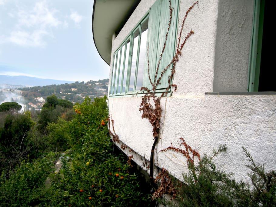 House facade facing Cannes