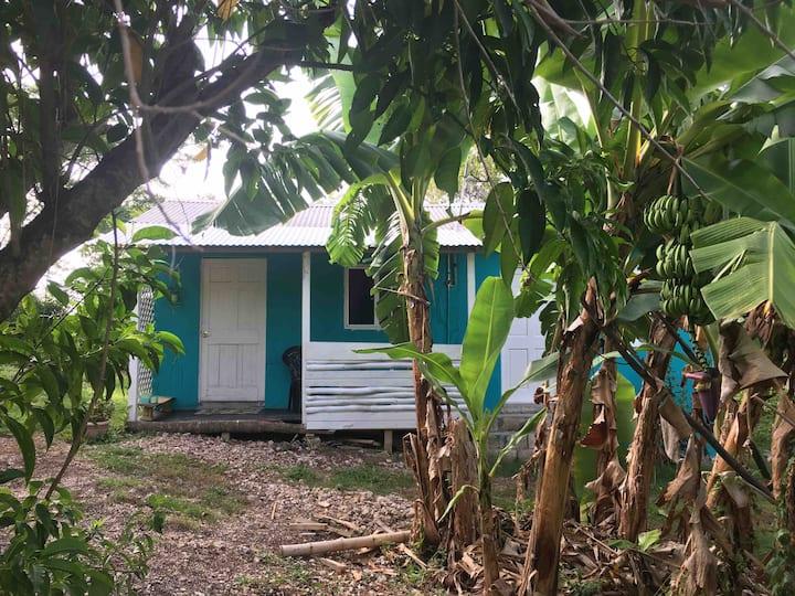 Easymans' Winifred Beach Cabin
