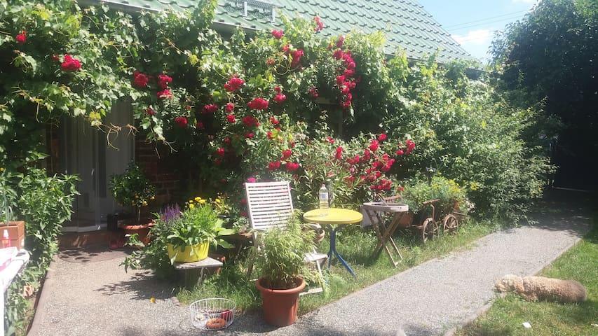 Gartenhaus im Spreewald mit vielen Tieren