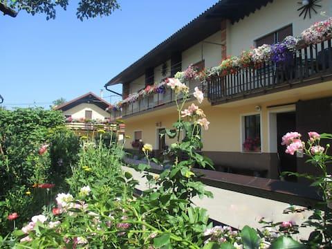 Apartments Mihelčič - Welcome