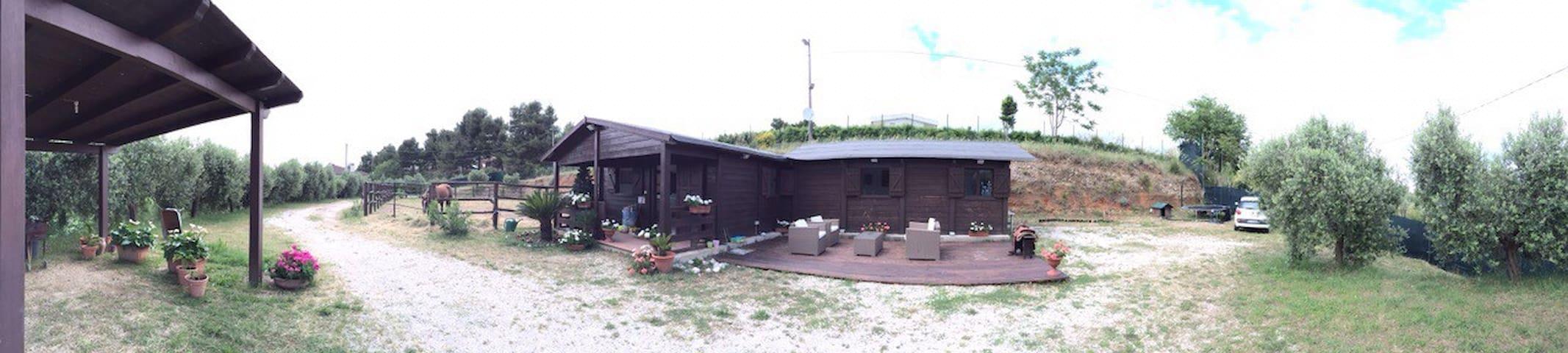 Splendido ranch a 5 minuti dal mare - Ripatransone  - House