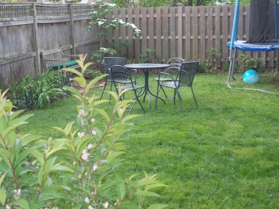 The backyard with private outdoor eating (extra outside chairs available) and a trampoline (please sign a waiver if you want to use this!).