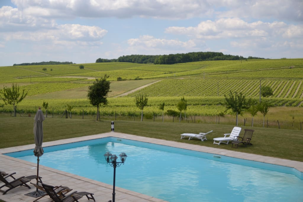 The pool facing the vineyards of Remy Martin