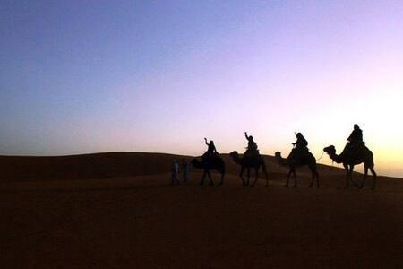 Berber Night in Sahara Desert - Hassilabied