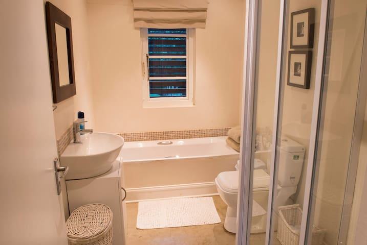 Guest Shower/Bath and Loo