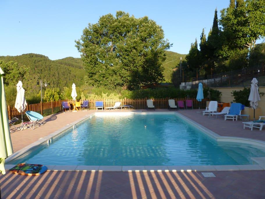 La piscina condivisa con gli ospiti