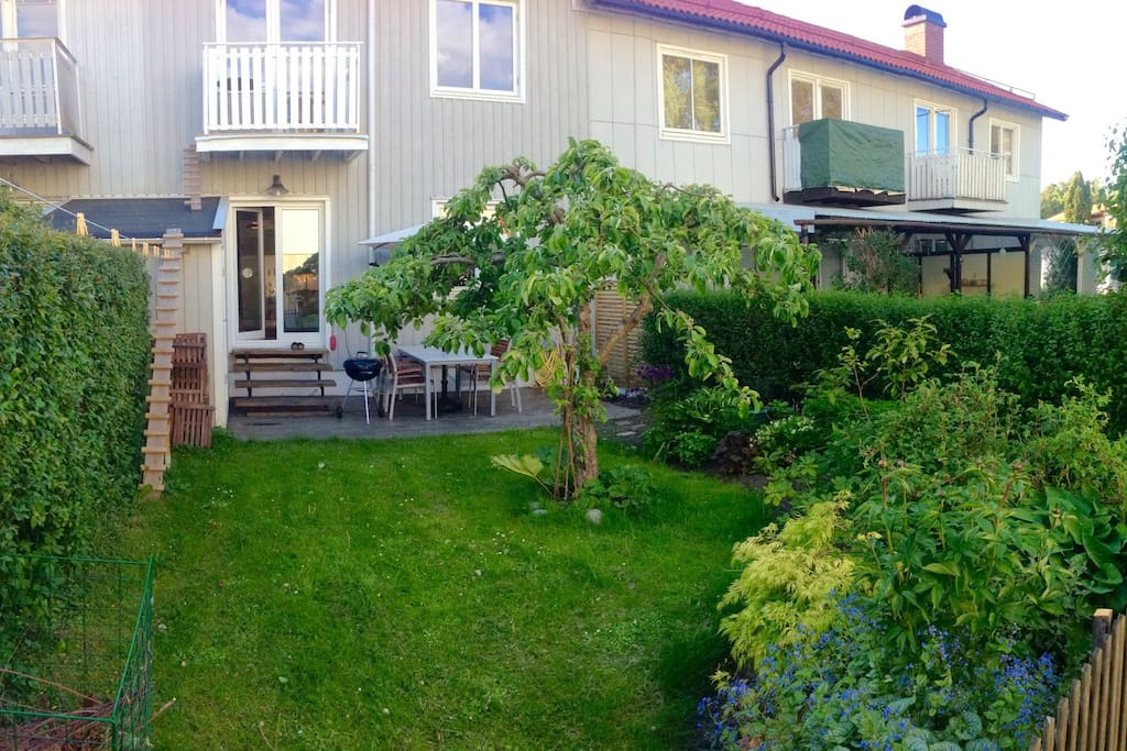 The garden with a place for outside dinner and barbeque. Flowers, apple tree, berries and herbs for you to enjoy!