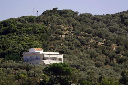 Apartment in olive grove VILLA THEA - Xanemos