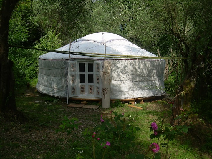 yurta di 7m di diametro