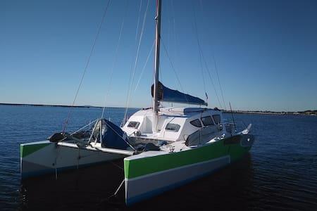 Catamaran haut en couleurs ! - Mahon - Boot