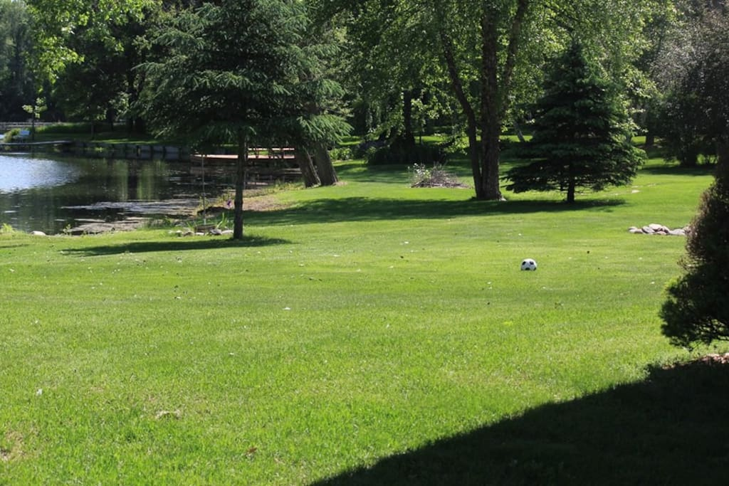 Large, flat backyard for soccer, volleyball, yard games, or camping