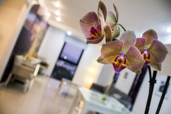 NEW!! 14th Floor Luxury Apartment in Heart of GDL