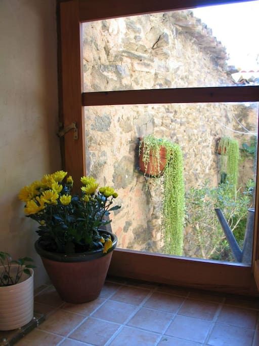 La finestra de la cuina al pati