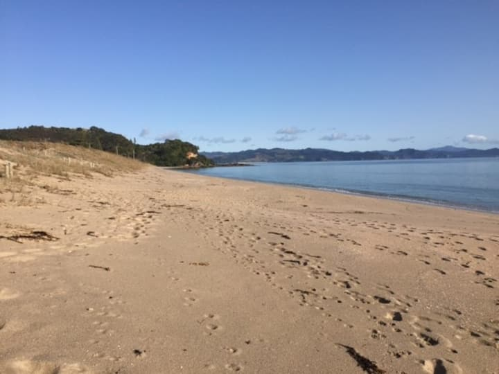 The Green Bach, Rings Beach, Whitianga