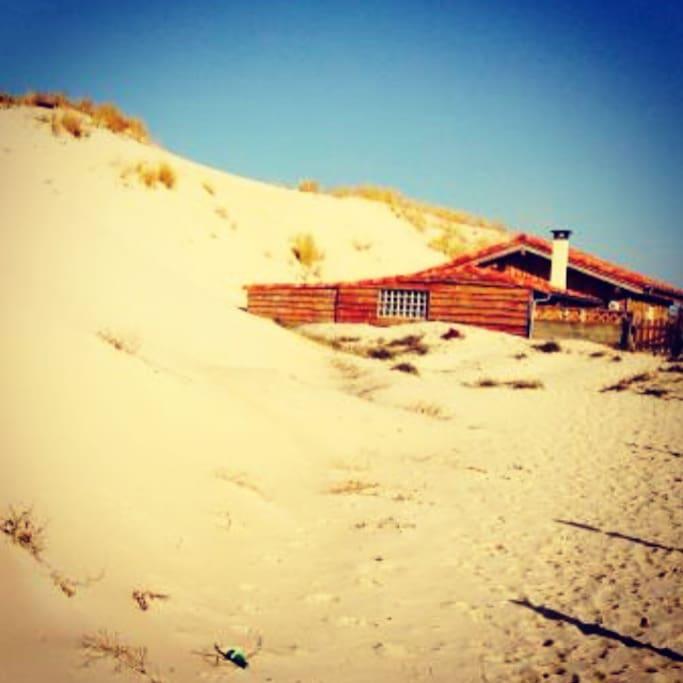 Nichée au pied de la dune...