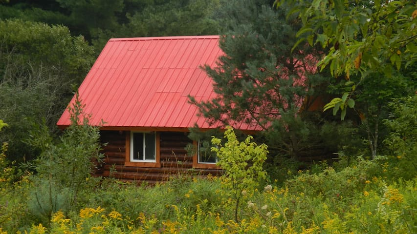 Rediscover Yourself - at Tom's Cabin
