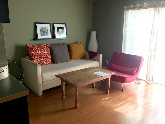 View of the living room. The sofa can be converted into a comfy twin bed for an extra guest.