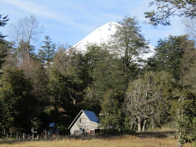 Refugio de Montaña Kultrun Mawida, habitación