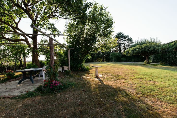 Renovated Farm - Grisolles -Blagnac
