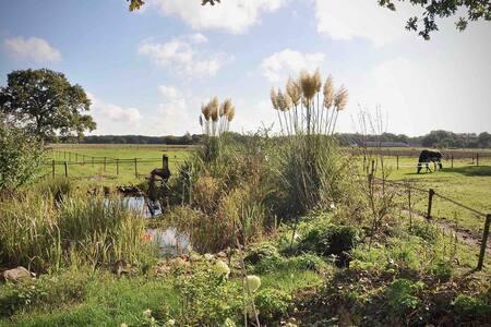 Ruime sfeervolle kamer in pittoresk Westervelde.