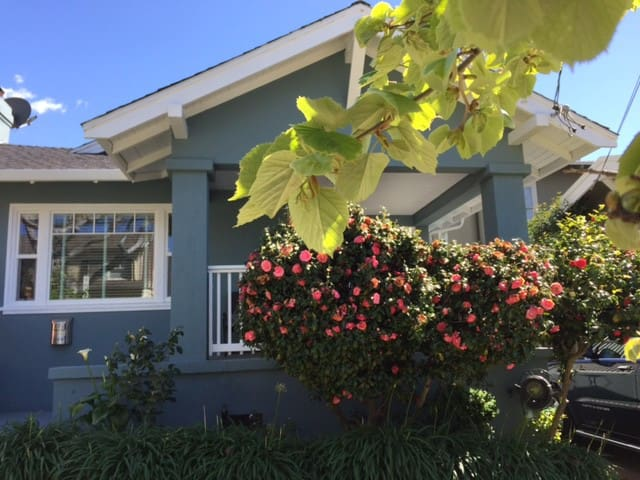 North Berkeley Haven - Berkeley - Pis