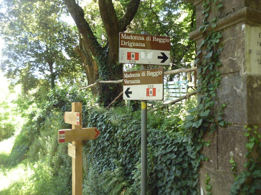 INCROCIO SENTIERI NEL PIAZZALE  SANTUARIO NOSTRA SIGNORA DI  REGGIO (10 minuti a piedi dall'abitazione)