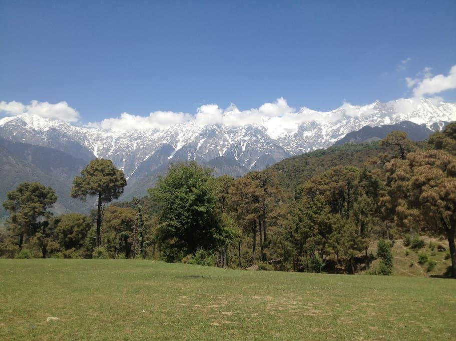 Dhauladhar view at 500 metres distance