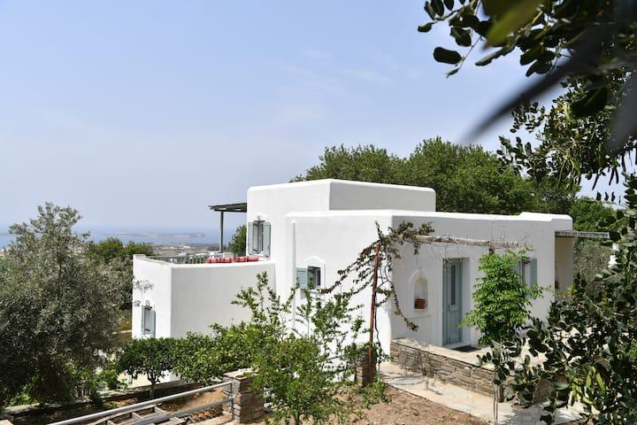 Villa Petaloudes, a private house