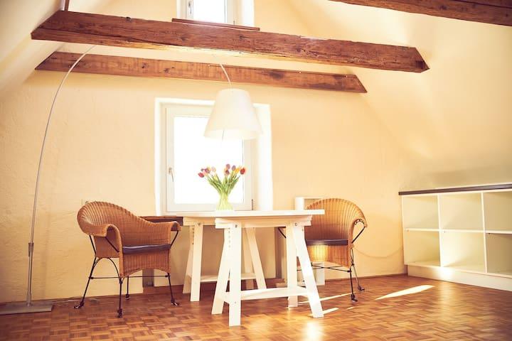 Stilvolle Wohnung in Altstadtnähe - Landshut - Lägenhet