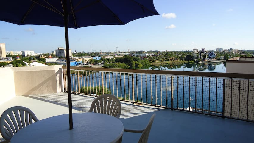 Studio with an amazing terrace - Orlando