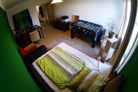 Geräumiges Zimmer in günstiger Lage - Dresden