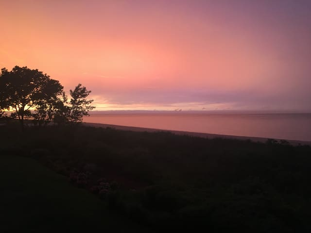 Beauty on the bay